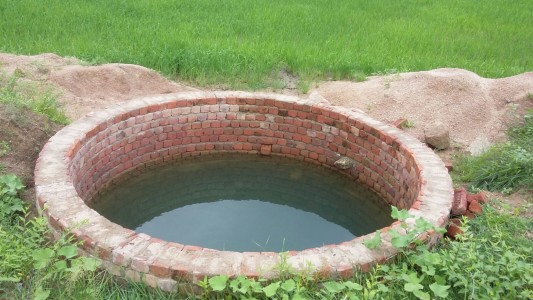 Water is life: A completed well with the new paddy crop growing around it